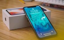 Bù lỗ bán iPhone, Apple sẽ trang bị thêm màn hình xịn hàng đầu cho MacBook và iPad?