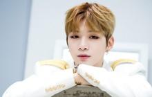 """Tấu hài cực mạnh: Kang Daniel sắp debut solo, công ty cũ mong """"nối lại tình xưa"""" và nhận cái kết đắng"""