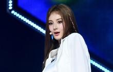 Red Velvet ôm cúp, (G)I-DLE trở lại cực ngầu cũng không hot bằng màn debut của idol Nga với gương mặt đẹp tựa Nancy