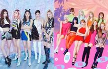 """JYP lên kế hoạch trình làng """"em gái"""" TWICE và ITZY tại Nhật , 2 đàn chị đình đám cùng nhà có nên lo lắng?"""