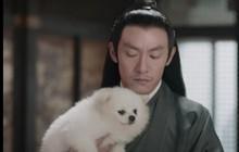 Thân là thần, Trương Chấn (Thần Tịch Duyên) vẫn khốn đốn vì một con chó trần gian