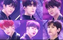 """Bảo toàn số lượng từ vòng đầu, 6 chàng trai này sẽ cùng nhau debut tại """"Produce X 101""""?"""