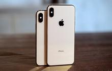 """Viết """"iPhone XS"""" hay """"Xs"""" mới đúng chuẩn để khỏi mang tiếng fan Apple sai chính tả?"""