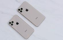 Đừng mua iPhone XI nếu bạn mắc chứng sợ lỗ, vì đây có thể là thiết kế được chọn bởi Apple