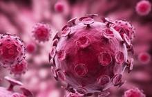 Những nguyên nhân phổ biến gây bệnh lupus không phải ai cũng biết rõ