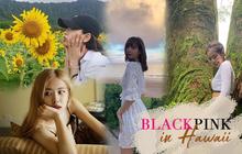 """Vừa trở về Seoul, các thành viên BLACKPINK liền """"xả"""" loạt ảnh nghỉ dưỡng và khám phá Hawaii, có Blinks nào """"cheap moment"""" luôn không?"""