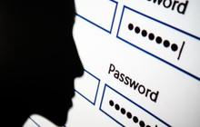 """""""Phốt"""" lộ dữ liệu cá nhân lớn nhất lịch sử vừa xảy ra: 773 triệu email, 21 triệu mật khẩu công khai trên Internet"""