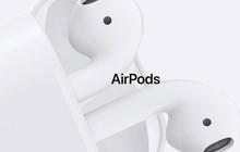 Tin vui cho iFan: AirPods 2 sẽ ra mắt trong nửa đầu năm nay với thiết kế mới, hỗ trợ theo dõi sức khỏe