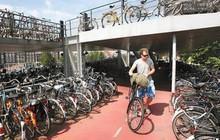 Hà Lan khó triển khai xe không người lái vì quá nhiều... xe đạp