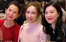 4 Hoa đán TVB một thời trong một khung hình, ngoại trừ Thái Thiếu Phân ai cũng khiến khán giả bối rối, đặc biệt là Lê Tư