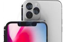 Cùng xem thiết kế mới của iPhone 2019 trong video concept ấn tượng