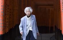 """Chiến dịch kêu gọi người già ngừng lái xe ô tô làm """"nóng"""" dư luận ở Nhật Bản"""