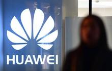 Chưa ra mắt, hệ điều hành thay thế Android của Huawei đã được dự đoán thất bại