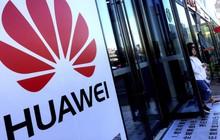 Lệnh cấm Huawei gọi tên thêm một nạn nhân: Smartphone màn hình gập Mate X 60 triệu đồng