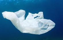 Cuộc cách mạng môi trường được thế giới mong chờ: Nhựa sẽ có thể được tái chế thành CO2 và nước