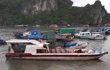 Tàu cá đâm tung nóc tàu cao tốc ở Quảng Ninh, 46 hành khách la hét hoảng loạn