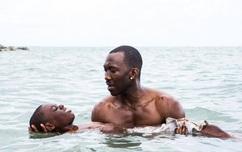 La La Land bị trao nhầm giải, Moonlight trở thành Phim truyện xuất sắc nhất của Oscar 2017