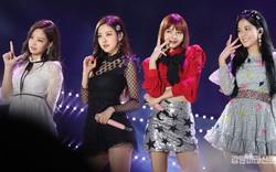 YG sản xuất full album Nhật của BLACKPINK trước cả Hàn nhưng đây mới là điều khiến fan tức giận
