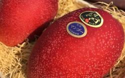 Nhật Bản có những loại trái cây thoạt nhìn thì cũng thường nhưng có giá cao bất ngờ
