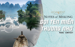 Kì ảo vẻ đẹp xứ Mekong khiến người tương tư, kẻ lưu luyến