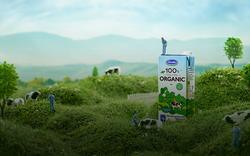 Đâu chỉ uống sau giờ tập luyện như Hana Giang Anh, sữa tươi organic còn có muôn kiểu biến tấu siêu thú vị