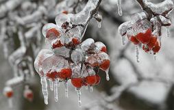 16 khung cảnh kỳ diệu chỉ có thể nhìn thấy vào mùa đông giá rét
