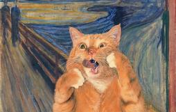 Chùm ảnh chế mèo béo hóa thân thành nàng thơ trong các bức họa nổi tiếng