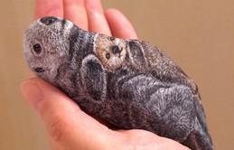 Nhặt những viên đá vứt đi, nghệ nhân điêu khắc Nhật Bản đã làm điều không ai ngờ tới