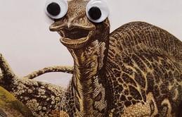 Gắn cặp mắt giả vào, xấu như khủng long cũng trở nên dễ thương hơn trăm lần