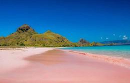 Ngắm nhìn vẻ đẹp thơ mộng của những bãi biển cát hồng đẹp nhất thế giới