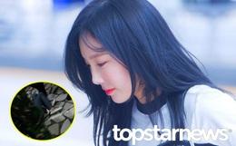 """Taeyeon viết tâm thư sau sự cố ngã quỵ: """"Tôi không thể ngừng khóc. Vòng 3 và ngực tôi bị động chạm liên tục"""""""