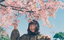 Lướt Instagram từ Âu đến Á là biết mùa hoa anh đào tuyệt đẹp đã thực sự đến rồi!