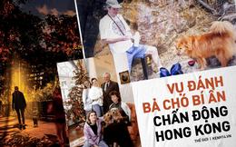 """Vụ đánh bả chó rúng động khu nhà giàu Hong Kong: Những con vật nhỏ bé """"rơi nước mắt màu đen"""" trong tuyệt vọng nhưng thủ phạm mãi là bí ẩn"""
