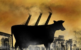 Giải pháp đột phá nhằm giảm bớt 90% lượng khí đang khiến Trái đất nóng lên từng ngày