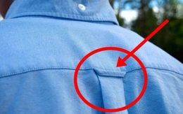 Chiếc vòng nhỏ này có tác dụng gì mà cái áo sơ mi nào cũng có?