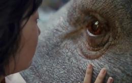 """Siêu phẩm hợp tác Mỹ - Hàn đắt đỏ nhất 2017 """"Okja"""" tung trailer đầu tiên"""