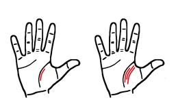 Số đường chỉ tay ảnh hưởng phản ánh điều gì về tình trạng các mối quan hệ của mỗi người