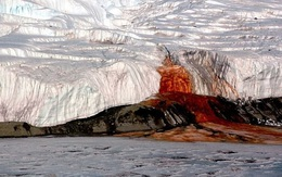 Thác máu đỏ rực bí ẩn trăm năm của Nam Cực nay đã có lời giải