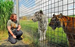 Xông vào cứu đồng nghiệp, một nữ nhân viên sở thú bị hổ vồ chết