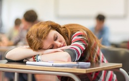 Những lý do muôn thuở khiến việc học của bạn luôn bị trì hoãn