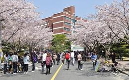 Những điều bạn cần biết khi có dự định du học Hàn Quốc