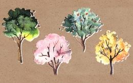 Chọn một cây yêu thích để khám phá điểm mạnh của bản thân