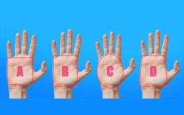 Xem hình dáng lòng bàn tay để đọc vị tính cách mỗi người