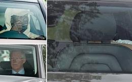 Sir Alex Ferguson, Ibrahimovic bất ngờ ghé sân tập của Man Utd