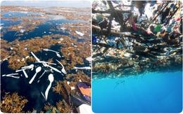 Cảnh tỉnh thực sự: Những bức hình cho thấy rác nhựa đang nuốt chửng đại dương