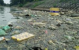 Clip: Rác thải, xác động vật bốc mùi hôi thối trên mặt hồ Đền Lừ ở Hà Nội