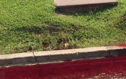 Dòng sông máu hòa phoóc-môn chảy ra từ nhà tang lễ tựa như thảm cảnh trong phim kinh dị