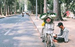 Ngày hè đẹp nhất của tụi con nít nhà nghèo: Bán sen, bán chè nhưng vui biết bao vì đỡ đần được cha mẹ