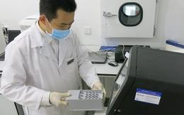 Vingroup hỗ trợ toàn bộ chi phí xét nghiệm ADN tìm danh tính liệt sỹ