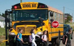 Văn hóa nhường đường cho xe buýt học sinh ở Mỹ khiến nhiều người trên thế giới kinh ngạc